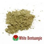 In Sense Botanicals Kratom White Bentuangie Powder
