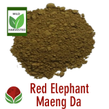 red-elephant-maengda